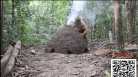 国外牛逼大咖可以用原始技术: 可重复使用的木炭