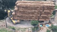 大货车满载一车木头, 强行通过3米窄急弯, 这技术至少有30年