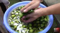 山野四哥: 农村这样的橄榄没人要的, 经过小伙泡制后, 价值可以翻10倍