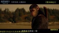 猿族之王吹响反攻集结号,《猩球崛起3》曝新预告