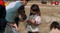 王诗龄: 爸爸快救命一下我听到一个怪声音 王导: 那是牛叫哈哈哈