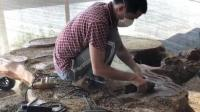 男子拉回一块烂木头根, 花大力气改造之后, 价值暴涨1000倍不止!