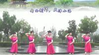 广场舞 爱是陪伴 恰恰舞 含背面动作分解教学