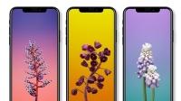 苹果iPhone X处理器首次曝光:搭载最强六核A11