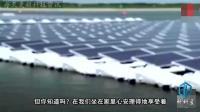 世界上最大的光能发电站, 投资22亿美元, 最终成了最大捕鸟器