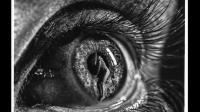 你以为这个眼睛是艺术摄影作品? 其实这是个绘画作品! 细节惊人! 我爱大香蕉视频相关视频