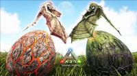 短手《方舟 生存进化 仙境传说 74天》孵化火龙和毒龙