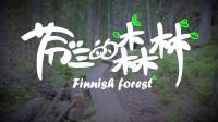 【真的去了】芬兰02: 森林里面都是宝, 打猎劈柴吃烧烤