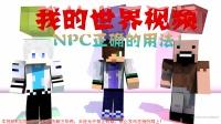 我的世界搞笑视频 NPC正确用法!