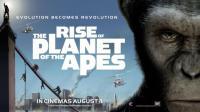 《猩球崛起3》凯撒太霸气, 前方经典惊悚回忆来袭, 这简直是童年的阴影!