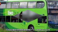 印度公交车拿牛粪做燃料, 自称领先中国20年? 这得多少粪才能跑一公里