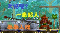 天铭 泰拉瑞亚 terraria 汉化版MOD 158 神射手之魂!