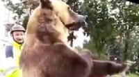 笑笑系列--战斗民族骑摩托带棕熊, 吓死宝宝了