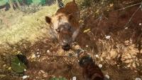 13【爱尼玛热游】带着大猫剑齿虎开启捡垃圾模式~什么游戏都能捡垃圾 孤岛惊魂原始杀戮