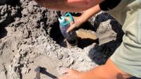 户外制作一个饮水机, 用嘴直接从地底下吸水