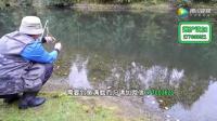 求钓鱼中药配方简单工具钓鱼01钓鱼高手教钓鱼技巧