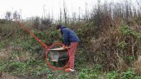 农村的蜂蜜就是这样出来的, 不是农村人, 肯定不知道