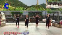 高手鬼步舞基础教学花式舞步视频鬼步舞教学鬼步舞点滑的分解 广场舞鬼步舞22步《浪