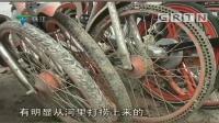 """广州: 芳村现共享单车""""坟场"""", 上万量共享单车任意堆放"""