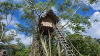 户外如何搭建一间完美的树屋, 看上去很简单其实需要技术性的