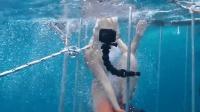 世界奇趣物语 女子开心跳进海里想与鲨共舞 下一秒却发生意外