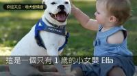 当1岁的独臂的小宝宝遇到一只仅有三条腿的狗狗, 让人莫名感动