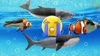 趣味早教: 鲨鱼 鲸鱼 企鹅 小丑鱼拼图, 教给宝宝认识
