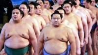 为什么很多日本美女希望嫁给相扑选手? 今天可算知道了