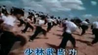 中国功夫面对质疑 100106