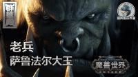 群雄殿: 《魔兽世界》 老兵 萨鲁法尔大王