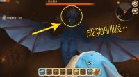 迷你世界生存13: 用变蛋枪驯服了黑龙, 还能叫他使用喷射火焰!