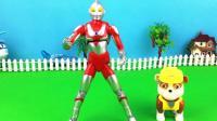 玩具屋奥特曼玩具 小力玩咸蛋超人多关节活动宇宙超人