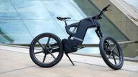 全球最牛的自行车, 速度堪比汽车, 17万元一辆