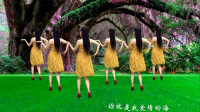 点击观看《简单好学舞蹈一不小心把你爱 广场减肥舞一学就会》