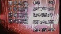 乌龙山剿匪记 18