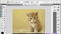 [PS]photoshop18零基础教程 羽化.羽化.羽化半径.选区.半透明18
