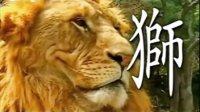 老虎vs狮子