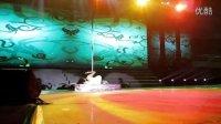 金艺舞蹈小野猫钢管舞超美现代抒情钢管舞