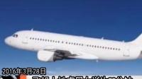 美军官飞机上性虐日本女大学生90分钟