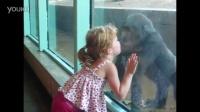 【藤缠楼】搞笑儿童!宝宝与动物们的有趣一刻