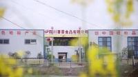 四川薯霸食品有限公司