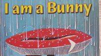 英文绘本 绘本故事-I am a Bunny我是一只小兔子
