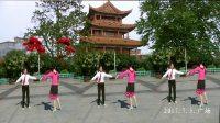 双人对跳 再见吧北京小姐 13步 江西泰和刘金玉 肖明燕表演