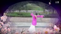 戏曲舞蹈《书房门前一枝梅》个人版