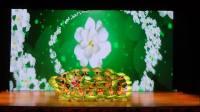 蓟州区第一小学学校艺术团同学表演的芭蕾舞《绿韵》