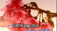 张明敏《一剪梅》
