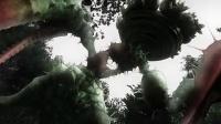 不可思议猫森林