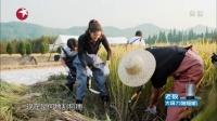 青春旅社 第一季 直奔目的地稻田 風景美不勝收 171224 青春旅社