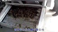 风干机 蔬菜风干机众发机械有限公司15949788826软包装风干机  众发机械