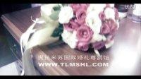 石家庄婚庆公司石家庄婚庆——提拉米苏国际婚礼尊爵馆作品